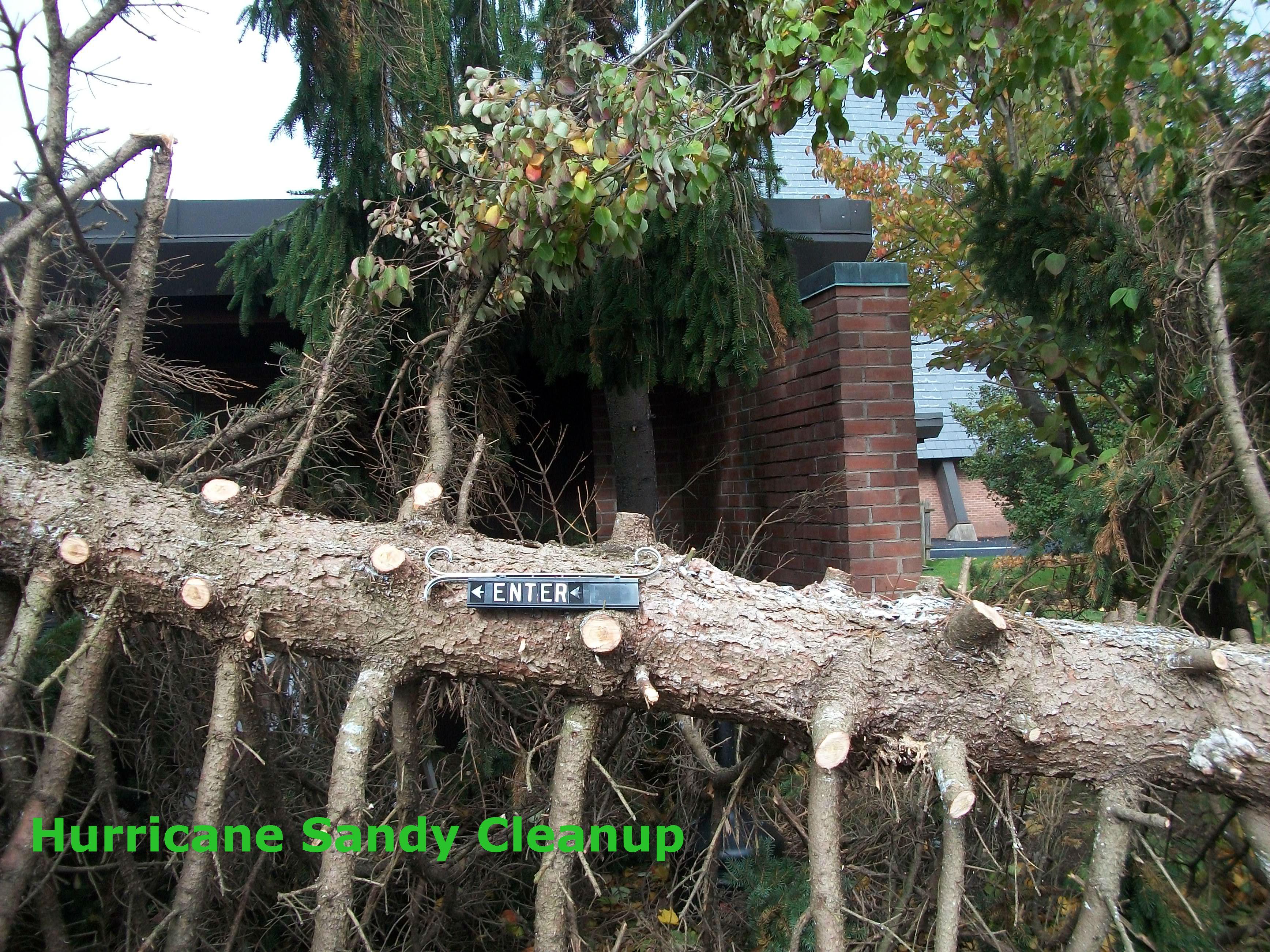 SandyCleanup